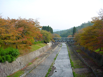 Bridge_in_autum