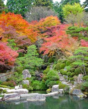 Hyakusai_garden1