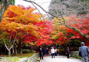 Saimyouji_path1