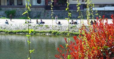 Spring_river2