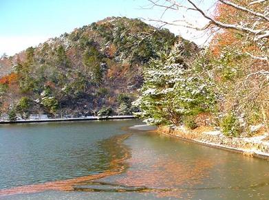 iced_pond