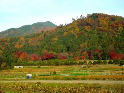 rikyuuyama-near1-2