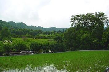 Tanadahigashiyama